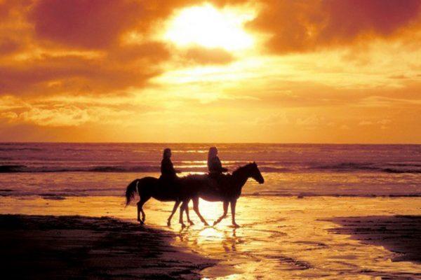 horseriding-2b