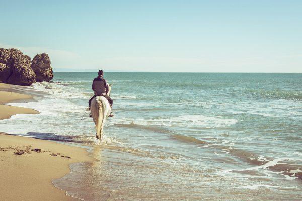 horseriding-6