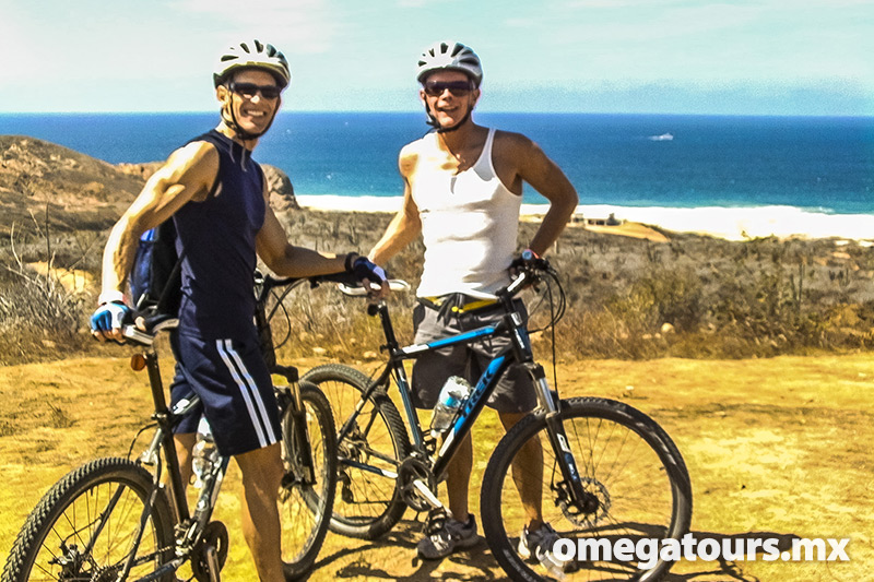 Get to know the beautiful beaches of the Todos Santos area pedaling in the company of your family or friends.