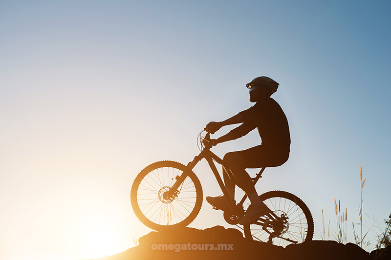 Guided and Self Guided Bike Tours