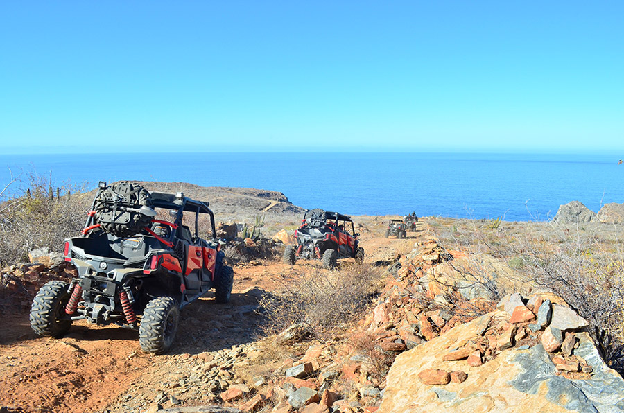 Omega Tours Todos Santos - Guided, Self guided and Rentals